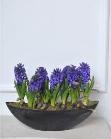A purple spring arrangement