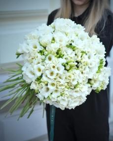 Bouquet 101 white freesias