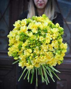 Bouquet 101 yellow freesias