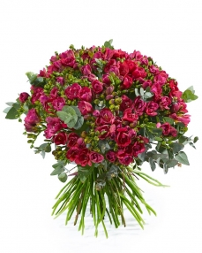 Bouquet 101 red freesias