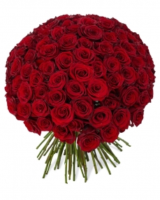 Bouquet 101 red roses