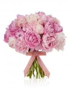 Buchet 25 bujori roz