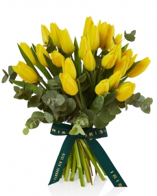 Bouquet 25 yellow tulips