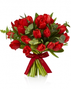 Bouquet 25 red tuips