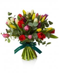 Bouquet of 31 multicolored tulips