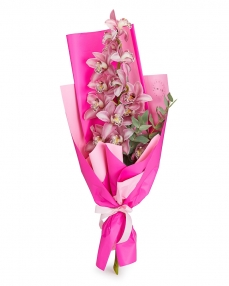 Bouquet pink orchid