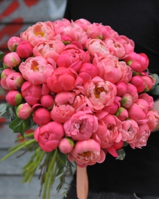 Bouquet 51 coral peonies