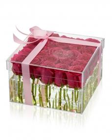 Acrylic box 25 cyclam roses