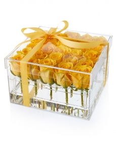 Acrylic box 25 yellow roses