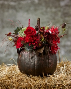 Floral arrangement Illustrated with autumn flowers