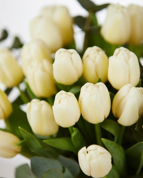 Buchet 25 lalele albe