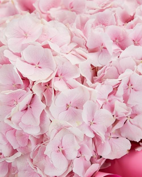 Buchet 3 hortensii roz