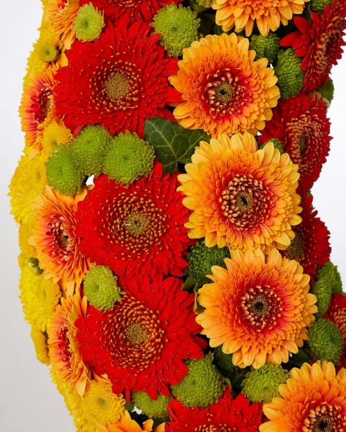 Funeral crown with gerbera and santini