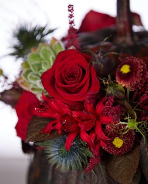 Ilustrate cu flori de toamna