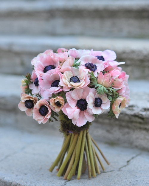 Spring is about anemones