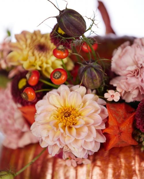 Aranjament floral Un dovleac