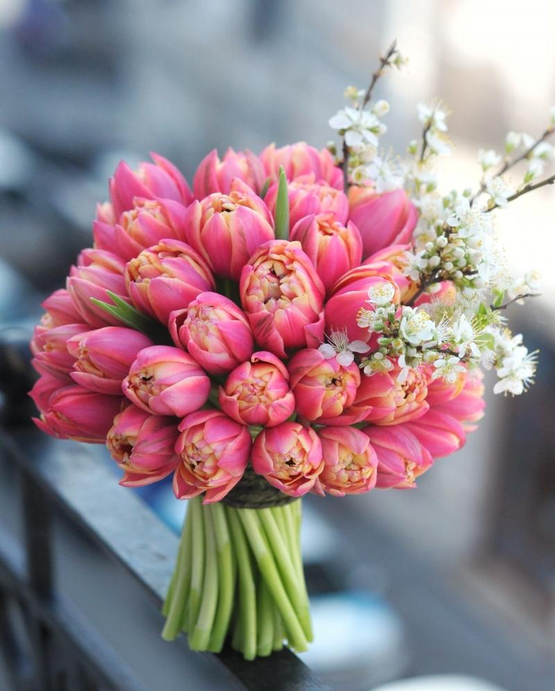 Buchet 51 lalele roz