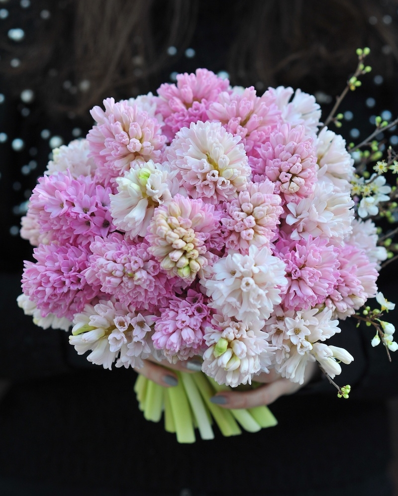 Bouquet with 35 pink hyacinths