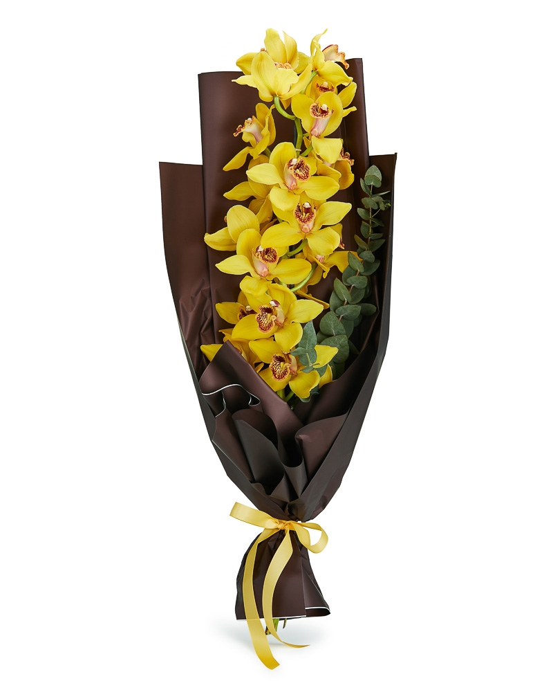 Bouquet yellow orchid