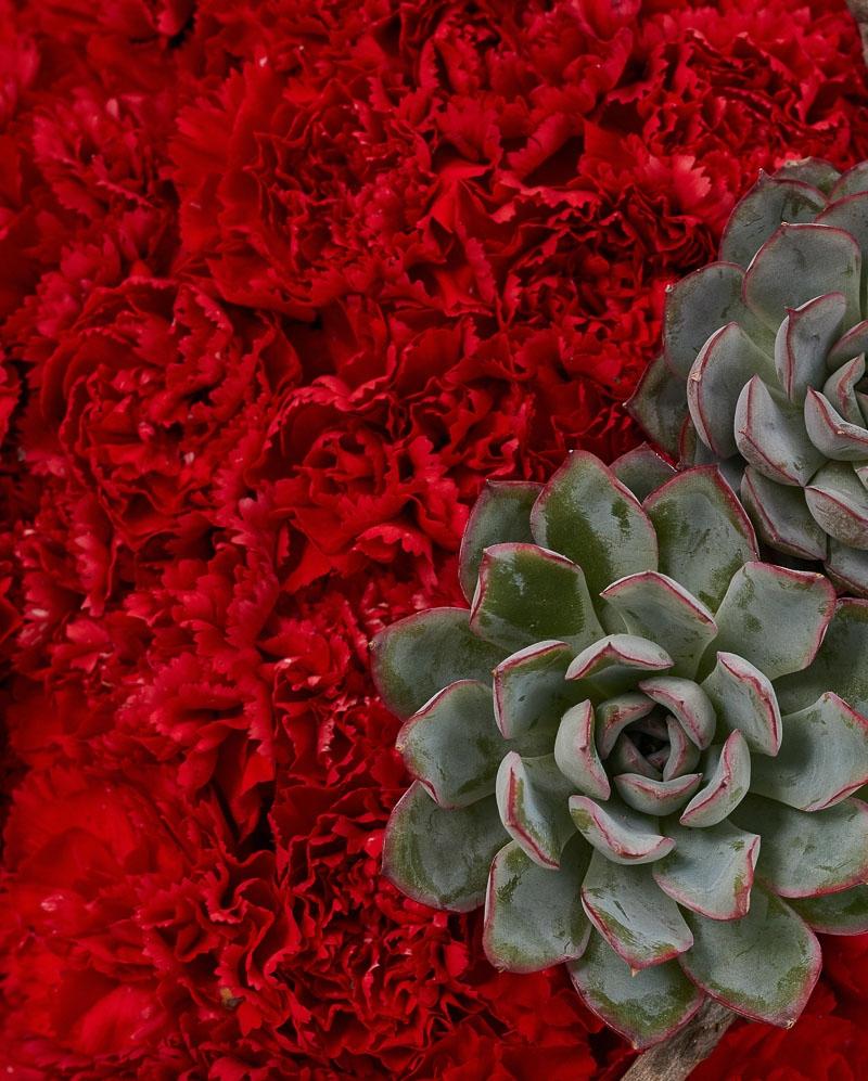 Cruce funerara cu garoafe rosii