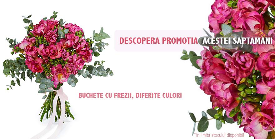 Banner frezii rosii
