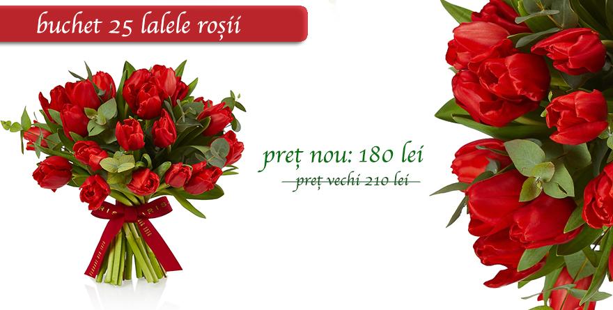 Banner lalele rosii
