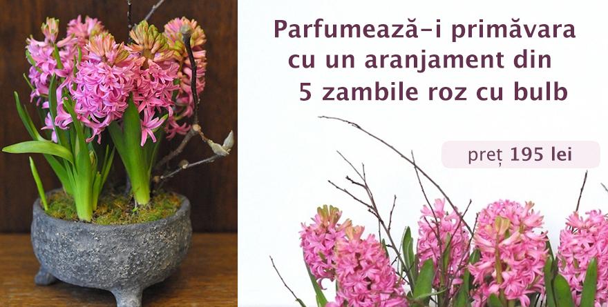 Banner zambile roz